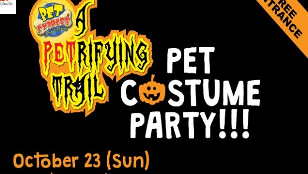 pet-express-a-petrifying-trail-pet-costume-party